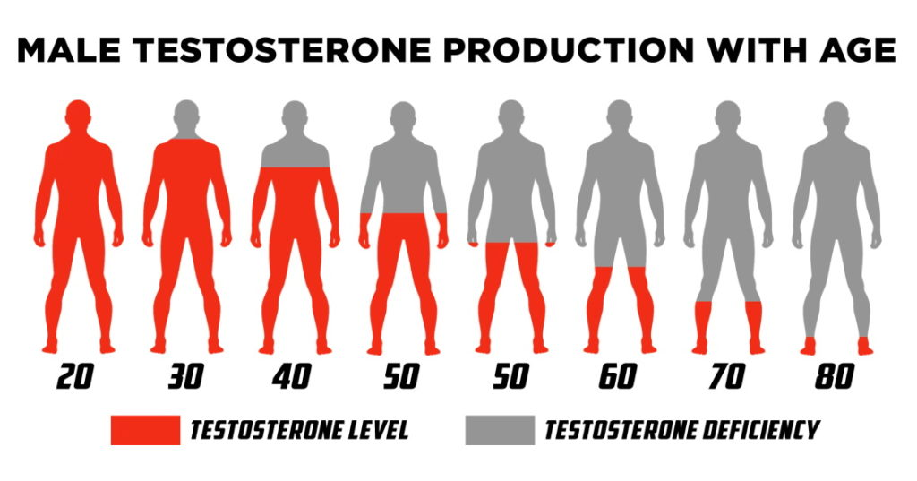 Testo levels by age