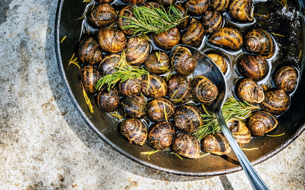 snails natural aphrodisiac